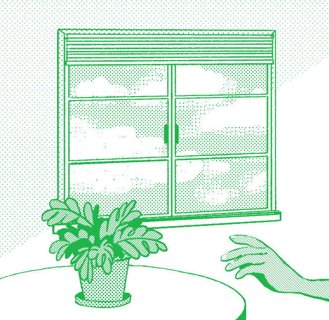 a hand reaching for a potted plant, window in the background.